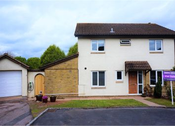 Thumbnail 4 bed detached house for sale in Hollowpits Court, Exeter