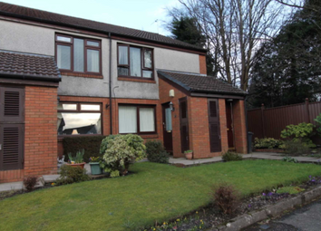 Thumbnail 1 bed flat to rent in Springfield Park, Johnstone