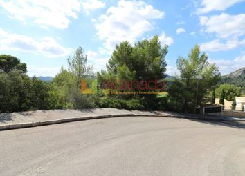 Thumbnail Land for sale in Pollença, Pollença, Mallorca