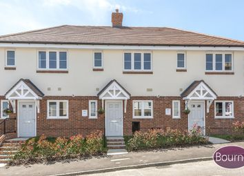 Thumbnail 2 bedroom terraced house for sale in St. James Avenue, Farnham, Surrey