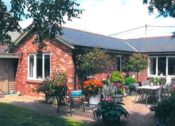 Thumbnail 3 bed detached bungalow to rent in Crewe Lane South, Crewe By Farndon, Chester