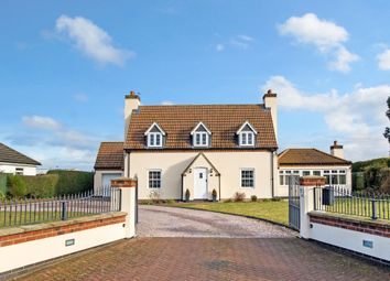 Thumbnail 4 bed detached house for sale in Willoughby Road, Boston
