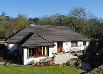 Thumbnail 4 bedroom detached bungalow for sale in Hanson Park, Northam, Bideford