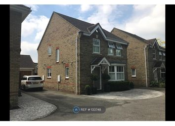 Thumbnail 4 bed detached house to rent in Brancaster Drive, Braintree
