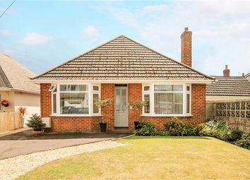 Thumbnail 3 bed bungalow for sale in Popes Road, Poole