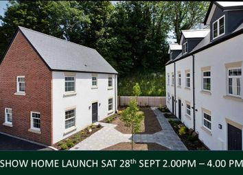 Thumbnail 3 bed detached house for sale in Mill Street, Ottery St Mary, Devon