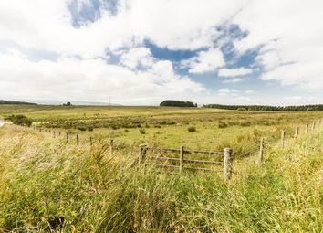 Thumbnail Land for sale in Land Near Haltwhistle, Northumberland