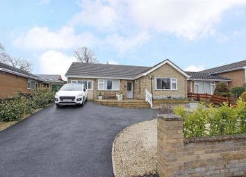 Thumbnail 3 bed detached bungalow for sale in Coggles Causeway, Bourne