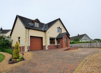 Thumbnail 4 bed detached house for sale in Trem Y Cwm, Llangynin, St. Clears, Carmarthen