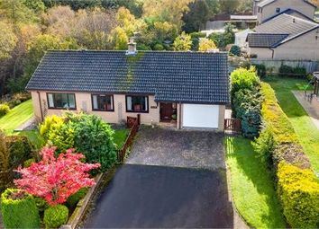 Thumbnail 2 bed detached bungalow for sale in Forstersteads, Allendale