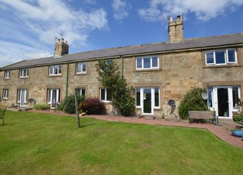 Thumbnail 2 bed cottage to rent in Red Steads, Howick, Northumberland