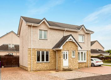 Thumbnail 2 bed semi-detached house for sale in Macnab Avenue, Montrose
