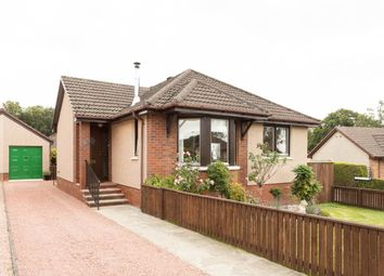 Thumbnail 3 bed bungalow for sale in Stormont Way, Scone, Perth