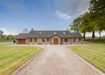 Thumbnail 4 bed detached house for sale in Ballynadrentagh Road, Crumlin
