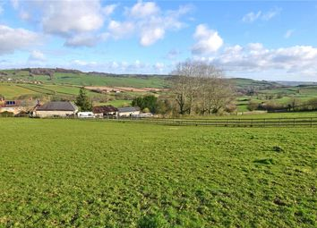 Thumbnail Leisure/hospitality for sale in Farway, Colyton, Devon