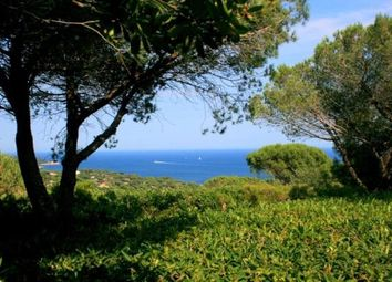 Thumbnail Land for sale in Ramatuelle, French Riviera, 83350