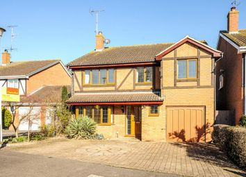 Thumbnail 4 bed detached house to rent in Binfield, Berkshire