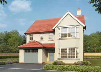 Thumbnail 4 bedroom detached house for sale in Worting Road, Basingstoke