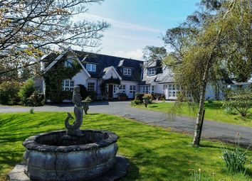 Thumbnail 4 bed detached house for sale in Strangford Road, Downpatrick, County Down