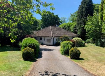 Thumbnail 4 bed detached bungalow for sale in The Paddock, Haslemere