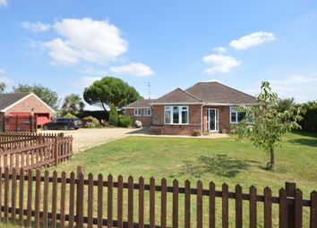 Thumbnail 4 bedroom bungalow to rent in Holbeach Drove Gate, Holbeach Drove, Spalding