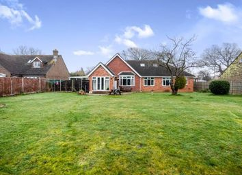 Thumbnail 5 bed bungalow for sale in Chidham, Chichester, West Sussex