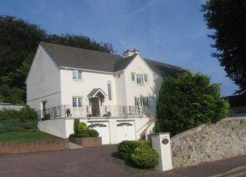 Thumbnail 4 bed detached house to rent in Old Beer Road, Seaton