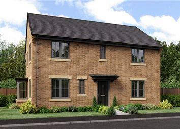 "Thumbnail 4 bedroom detached house for sale in ""The Stevenson"" at School Aycliffe, Newton Aycliffe"