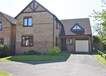 Thumbnail 4 bed detached house for sale in Epping Walk, Daventry
