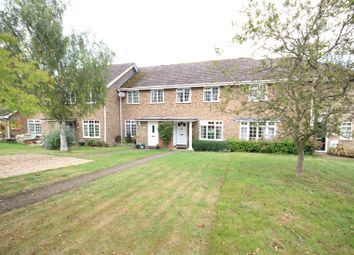 Thumbnail 3 bed property to rent in Ecob Close, Guildford