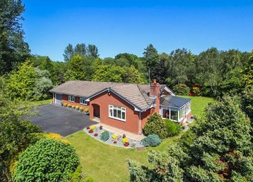 Thumbnail 3 bed bungalow for sale in Lakeside Avenue, Llandrindod Wells