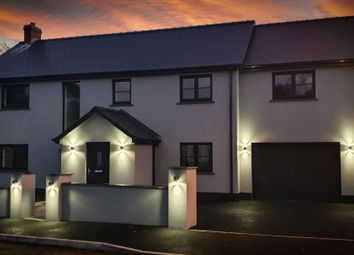 Thumbnail 4 bed detached house for sale in Poplar Meadow, Freystrop, Haverfordwest