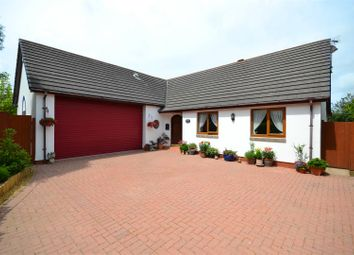 Thumbnail 3 bed detached bungalow for sale in Blenheim Drive, Neyland, Milford Haven