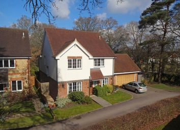 Thumbnail 4 bed detached house for sale in The Warren, Passfield, Liphook