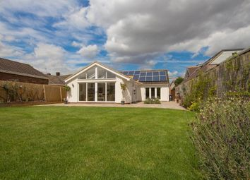 Thumbnail 3 bed detached bungalow to rent in Whittlesford Road, Newton, Cambridge
