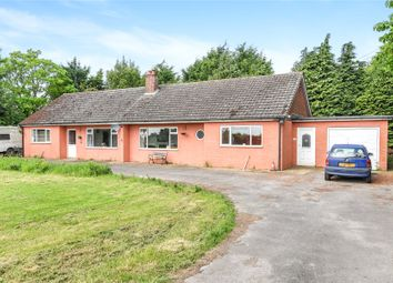 Thumbnail 5 bed bungalow for sale in Station Road, Old Leake