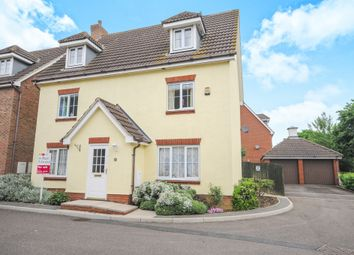 Thumbnail 5 bed detached house for sale in Black Bread Close, Braintree