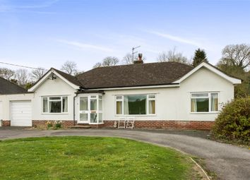 Thumbnail 3 bed bungalow for sale in Blandford Road, Coombe Bissett, Salisbury