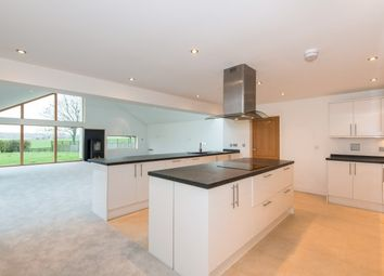 Thumbnail 4 bed detached bungalow to rent in Pitt, Winchester