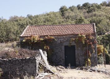 Thumbnail Farm for sale in Aranhas, Penamacor, Castelo Branco, Central Portugal