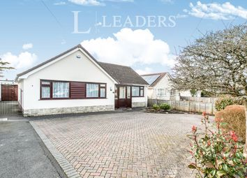 Thumbnail 3 bed bungalow to rent in Stalbridge Drive, Ferndown