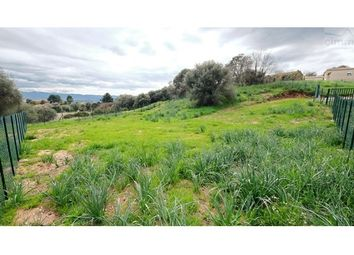 Thumbnail Land for sale in 20167, Afa, Fr
