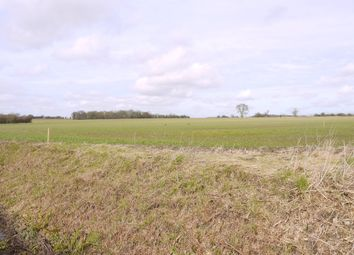 Thumbnail Land for sale in Brockley, Bury St Edmunds, Suffolk