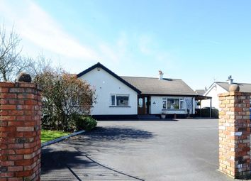 Thumbnail 3 bed bungalow for sale in Church Road, Carrowdore