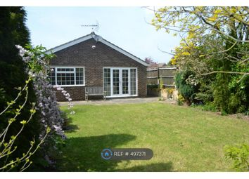 Thumbnail 4 bedroom bungalow to rent in Mill Lane, Cambridge