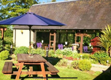 Thumbnail Restaurant/cafe for sale in Torphichen, West Lothian