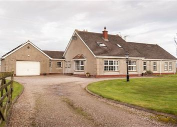 Thumbnail 5 bed detached house for sale in Carrowclare Road, Limavady, County Londonderry