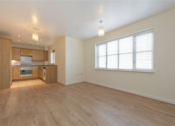 Thumbnail 2 bedroom flat to rent in Robson Avenue, London