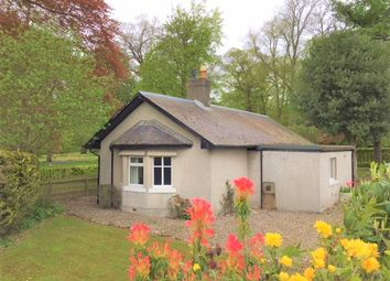 Thumbnail 2 bed cottage to rent in Forfar Road, Coupar Angus
