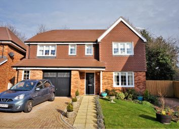 Thumbnail 4 bed detached house for sale in Maple Tree Close, Blandford Forum